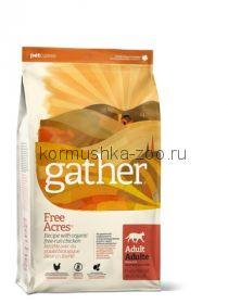 GATHER organic (Petcurean) органический корм для кошек с курицей