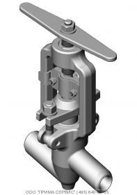 Клапан запорный 1с-11-1 Ду10 Ру100