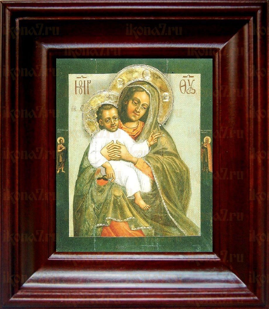 Евтропьевская икона БМ (21х24), простой киот