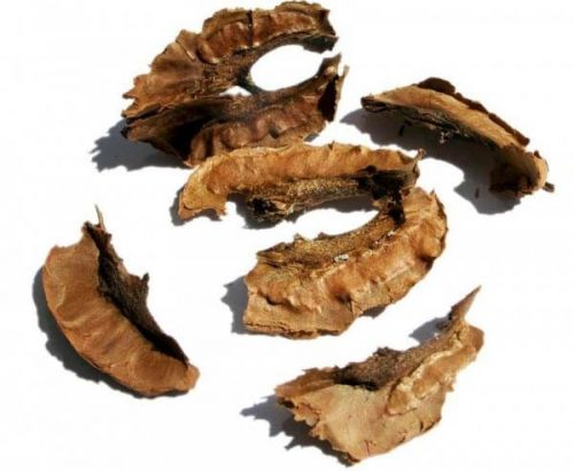 Перегородка грецкого ореха