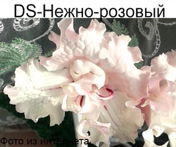 DS-Нежно-розовый (П.Еникеев)