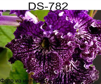 DS-782 (П.Еникеев)
