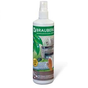 Чистящая жидкость-спрей 250мл BRAUBERG д/пластика/24 510118