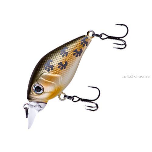 Купить Воблер Fishycat iCAT 32F-SR (2,9г) X08