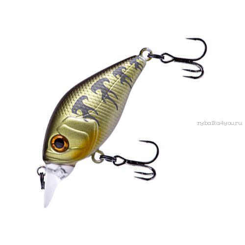 Купить Воблер Fishycat iCAT 32F-DR (3,2г) X04
