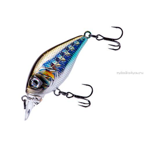 Купить Воблер Fishycat iCAT 32F-DR (3,2г) R09