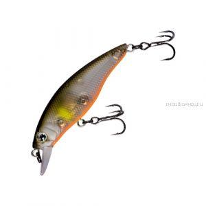 Воблер Fishycat Straycat 55F (3,9г) R18