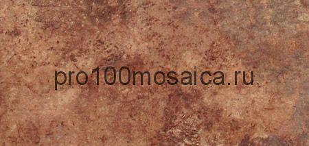 15-005-24 Cir Chicago Wrigley 20x40 см (CIR)