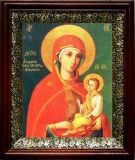 Молченская икона БМ (19х22), темный киот