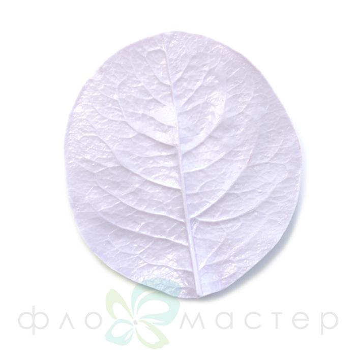 Молд лист каприфоль (жимолость) большой