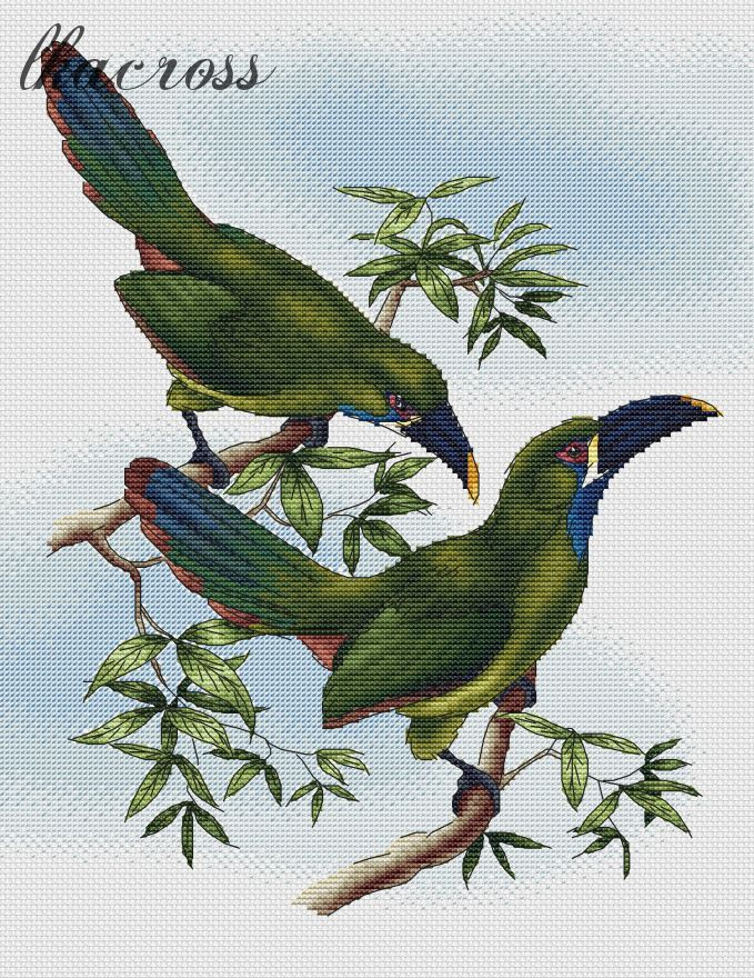 """Toucans"". Digital cross stitch pattern."