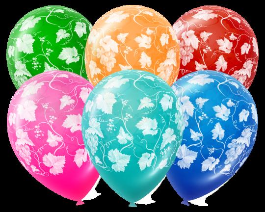 Виноградная Лоза латексные шары с гелием