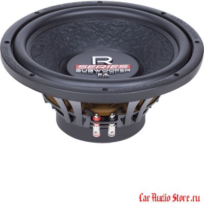 Audio System R12 FA (Free Air)
