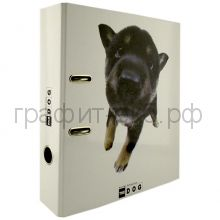 Файл А4 7см Clairefontaine THE DOG CL26162