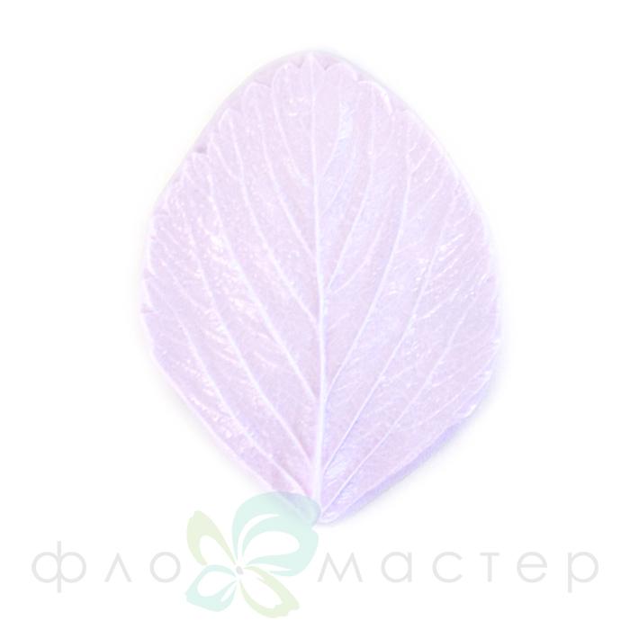 Молд лист клубники