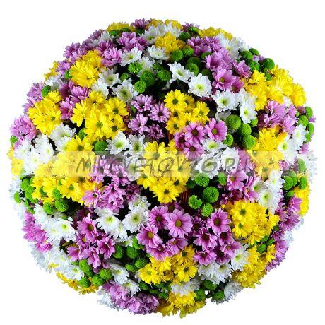 """Букет """"51 разноцветная хризантема"""""""