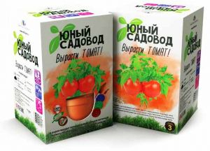 Набор  'Вырасти томат'