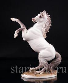 Конь на дыбах, Nymphenburg, Германия, сер. 20 в.