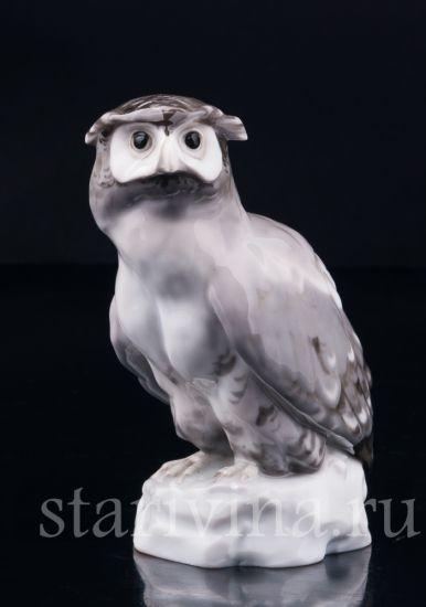Изображение Ушастая сова, Karl Ens, Германия, нач. 20 в