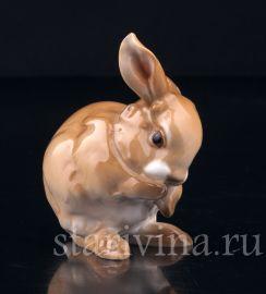 Умывающийся кролик, Hutschenreuther, Германия, 1970 гг., артикул 03126