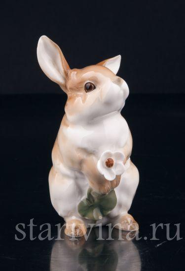 Изображение Кролик с цветком, Hutschenreuther, Германия