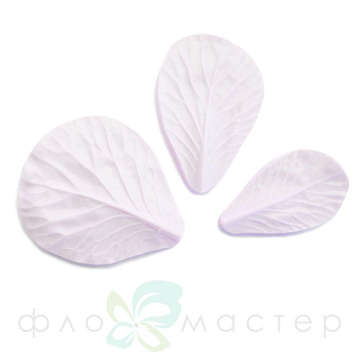 Набор молдов листья брасики (3шт)