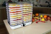 Дегидратор для овощей и фруктов Gochu D-310 www.sklad78.ru