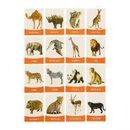 """Обучающие карточки """"Животные жарких стран"""" 16шт"""