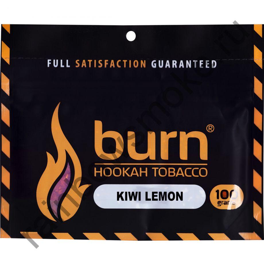 Burn 100 гр - Kiwi Lemon (Киви и лимон)