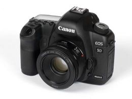 Canon EOS 5D Mark II  50mm f/1.8 STM