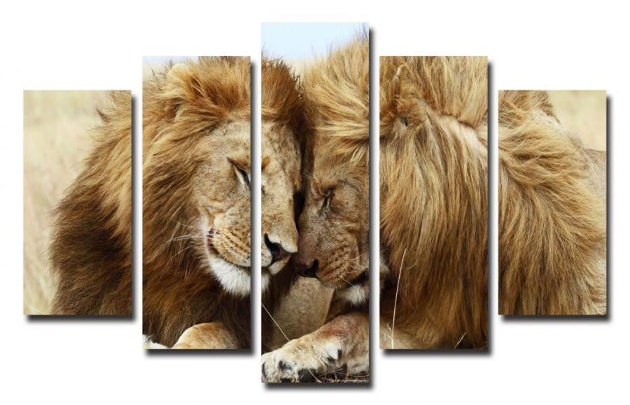 Модульная картина Львы