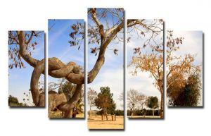 Модульная картина Сплетенные деревья