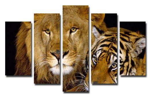 Модульная картина Лев и тигр