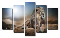 Модульная картина Гордый лев