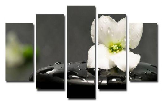 Модульная картина Цветок и камень