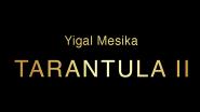 #НЕНОВЫЙ Tarantula II (онлайн обучение + гиммик) by Yigal Mesika