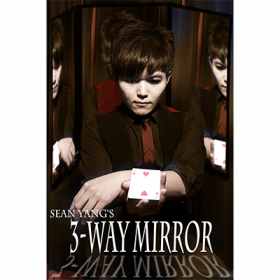 3-Way Mirror by Sean Yang and Magic Soul