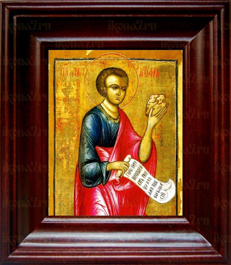 Аввакум, пророк (21х24), простой киот
