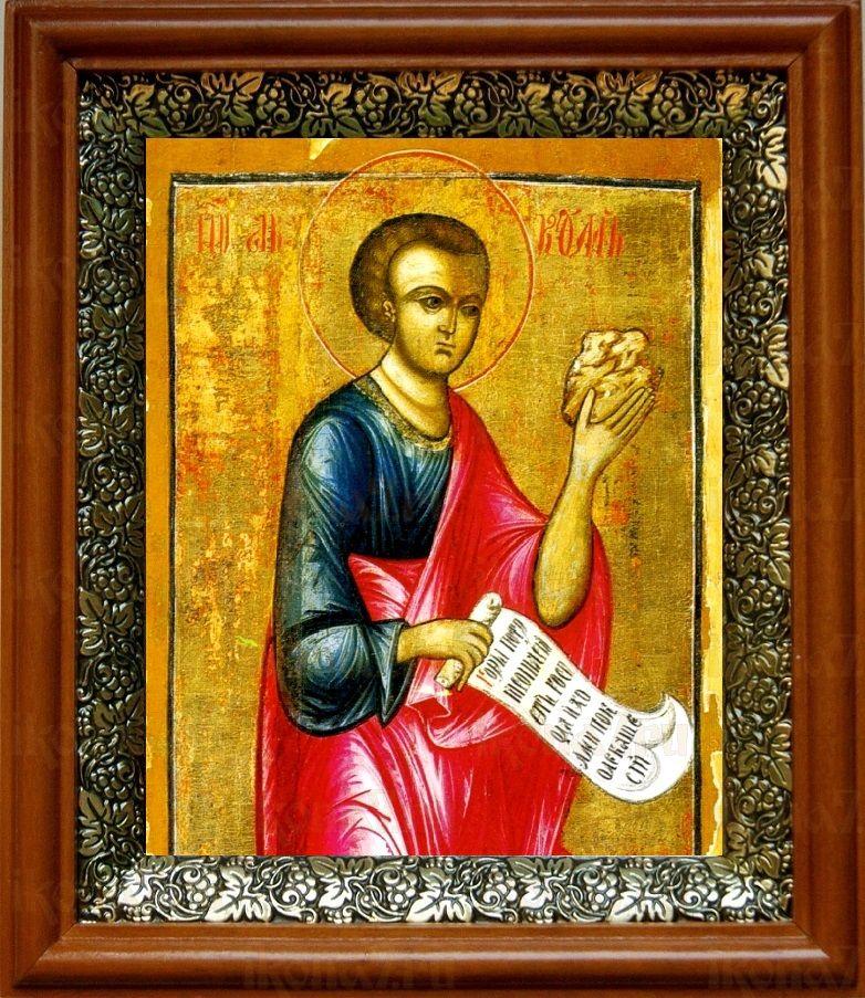 Аввакум, пророк (19х22), светлый киот