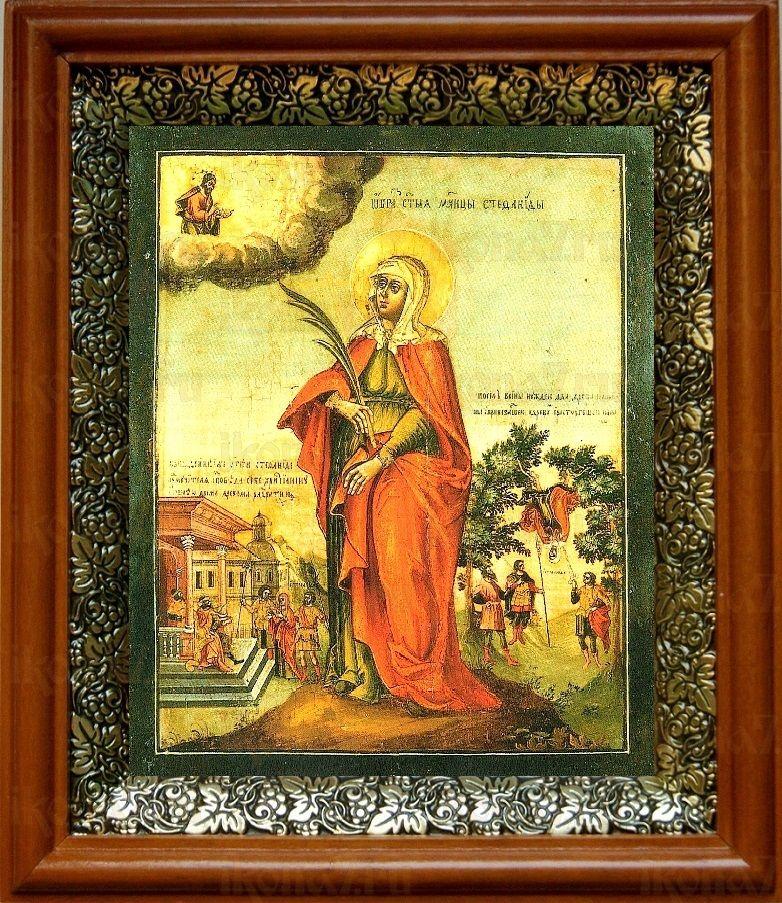 Стефанида Дамасская (19х22), светлый киот