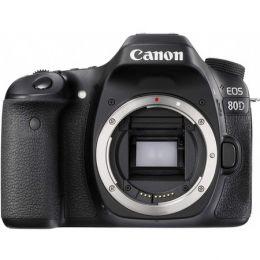 CANON EOS 80D EF 24-105mm 4L USM