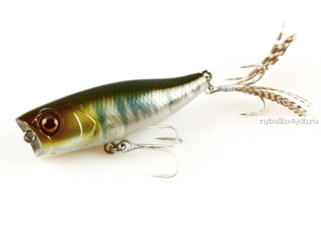 Купить Воблер Jackall Chubby Popper 42 мм / 3,3 гр плавающий цвет: ghost oikawa