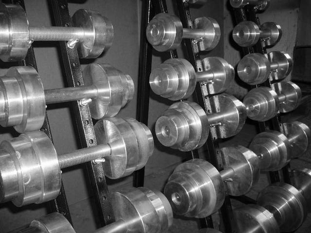 Гантель разборная (металл) 16 кг [ГР_16]
