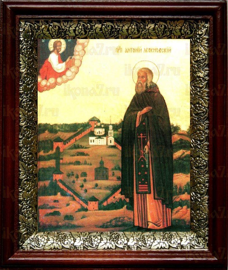 Антоний Леохновский (19х22), темный киот