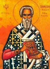 Трифиллий Левкусийский (рукописная икона)