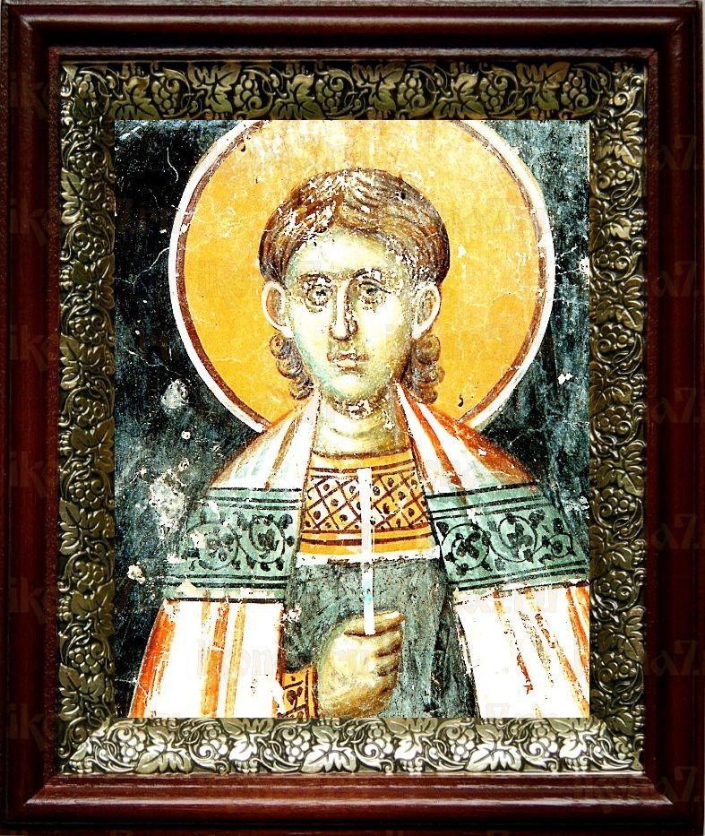 Вениамин Персидский (19х22), темный киот