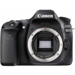 Canon EOS 5D Mark IV Kit EF 24-105mm f/4L IS USM