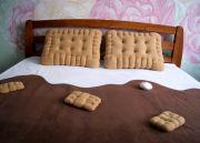 Подарок сладкоежке - замечательный комплект: шоколадный плед с зефирками и две подушки печеньки.