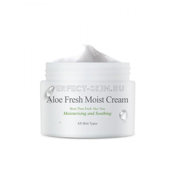 The Skin House Aloe Fresh Moist Cream - Увлажняющий крем с экстрактом алое