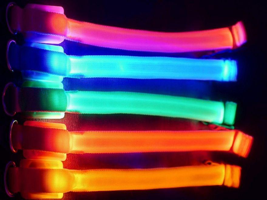 Светящийся ошейник (Цвет: Оранжевый)